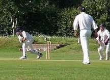 Image of a cricket match in play
